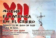 XII Noche Flamenca en el Cerro
