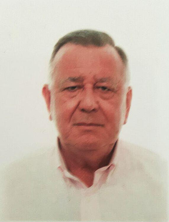 Bernardo Pallarés - Vicesecretario
